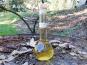 Vinaigres de la Carrière - Vinaigre de Cidre bio Vieilli en Fût de Chêne - 200 ml