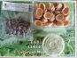 Limero l'Escargot Mayennais - Atelier Culinaire : Lot De 4x 12 Chairs D'escargot, 4x 12 Croquilles Et 250 g De Beurre Persil