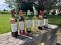 Vignobles Fabien Castaing - Lot Découverte des Vins de Bergerac