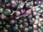 Les Jardins de Valojoulx - Oignons Rouge Vrac