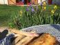 Des Poules et des Vignes à Bourgueil - Feuilleté De Volailles Aux Asperges