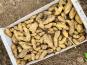 Maison Argentain - Pomme de terre ratte - 1kg