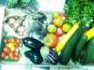 Les Jardins de Valojoulx - Panier De Légumes De Saison Grand